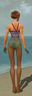 Mesmer Elite Canthan Armor F gray arms legs back