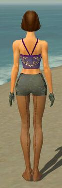 Mesmer Elite Enchanter Armor F gray arms legs back