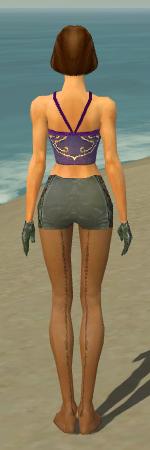 File:Mesmer Elite Enchanter Armor F gray arms legs back.jpg