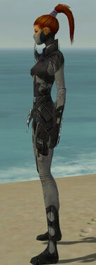 Assassin Kurzick Armor F gray side