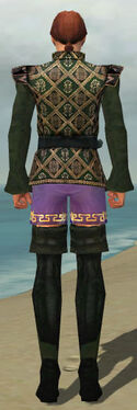 Mesmer Courtly Armor M gray chest feet back
