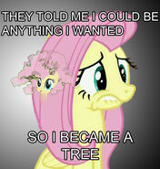 7438 - fluttershy fluttertree leafing the dream tree