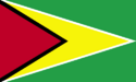 Guyana flag large