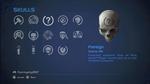 HCEA Foreign Skull
