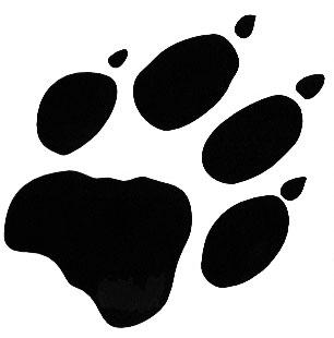 File:Wolf paw.jpg