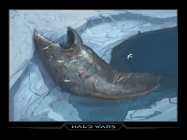 File:Harvest Whale.jpg