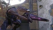 Halo3 Jackal