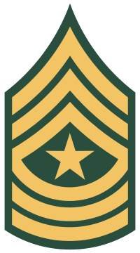 File:SGM-(USA).png