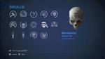 HCEA Bandanna Skull