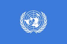 United nations flag.png
