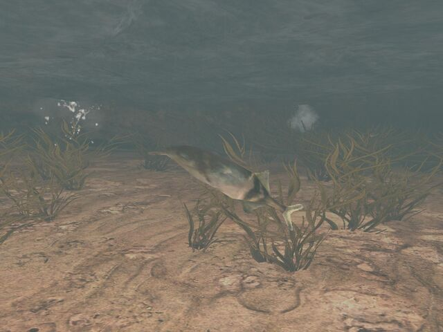 File:High Ground Fish-Full.jpg