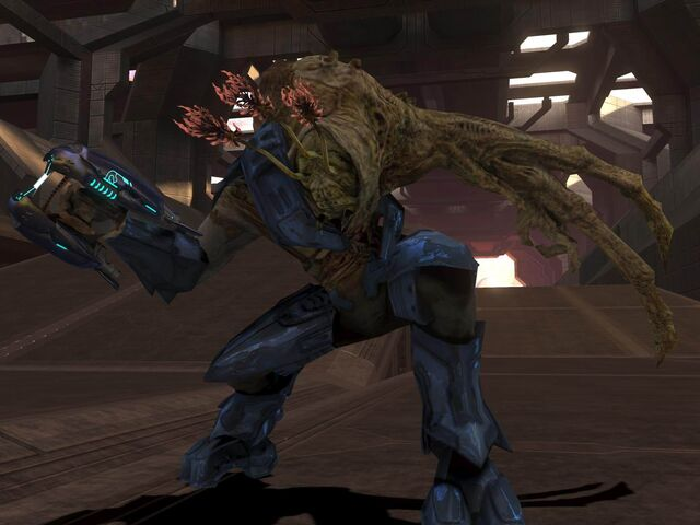 File:ELITE COMBAT FORM IN HALO 3 by victortky.jpg