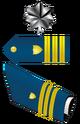 UNSC-CG Commander