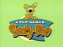 Pup-named-scooby-doo
