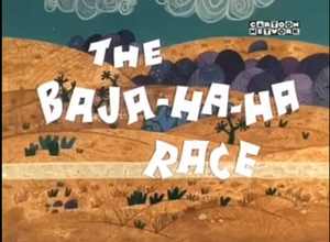 The baja ha ha race