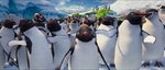 Happy Feet Two - Ramon continue listening to Sven
