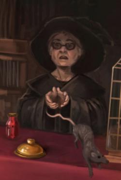 Magical Menagerie saleswoman