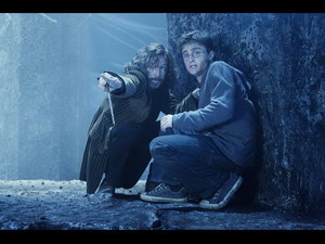 Large Sirius Black and Harry Potter-tao2iz94