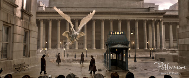 File:Thunderbird Fantastic Beasts CC Trailer WM.JPG