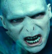 Voldemort95