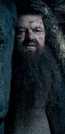 File:Hagrid trio.jpg