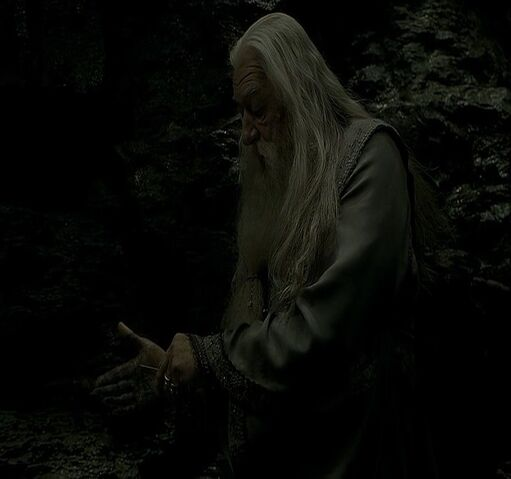 File:Dumbledore gaining entry.jpg