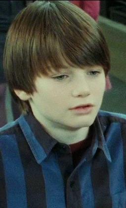 File:Harry-potter7-movie-screencaps.com-13682.jpg