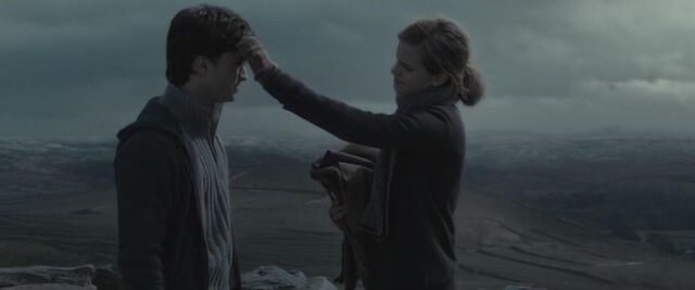 File:Harry- Hermione - Horcrux Hunt.JPG