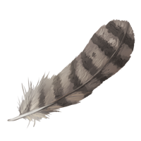 File:Grey-feather-lrg.png