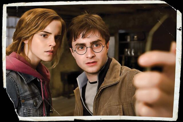 File:Hermione-and-harry Deathly hallows 2.jpg