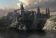 Hogwartsmatte1c2 (2)