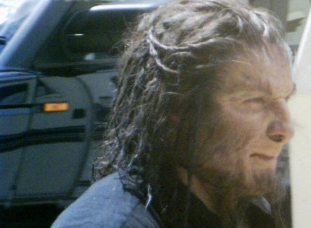 File:Greyback DH.jpg