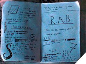 Harry's Diary