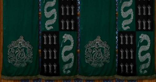 File:Slytherin Banners and Logo.JPG