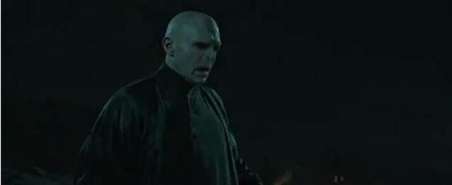 File:HPDH 2 VOLDEMORT battle.jpg