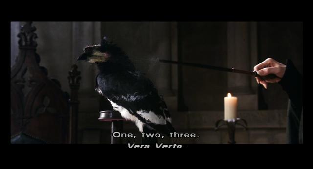 File:Vera Verto ref.png