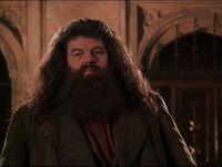 Hagrid returns