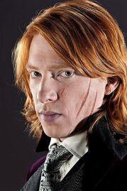 File:Bill Weasley 2.jpg