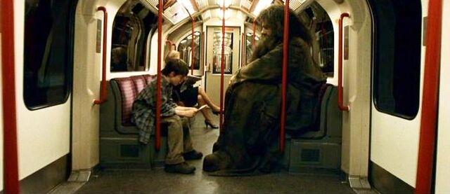 File:Harry Potter and Hagrid at Muggles Train.JPG
