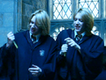 Fred george ageing potion.png