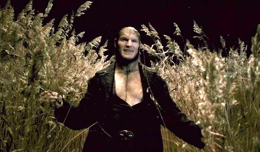 Image result for greyback