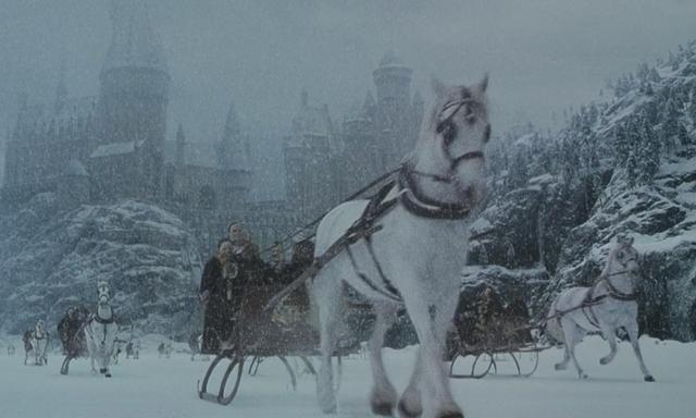 File:Hogwarts horse band.png