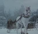 Hogwarts horse band