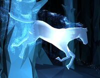 DappleGreyStallion-patronus