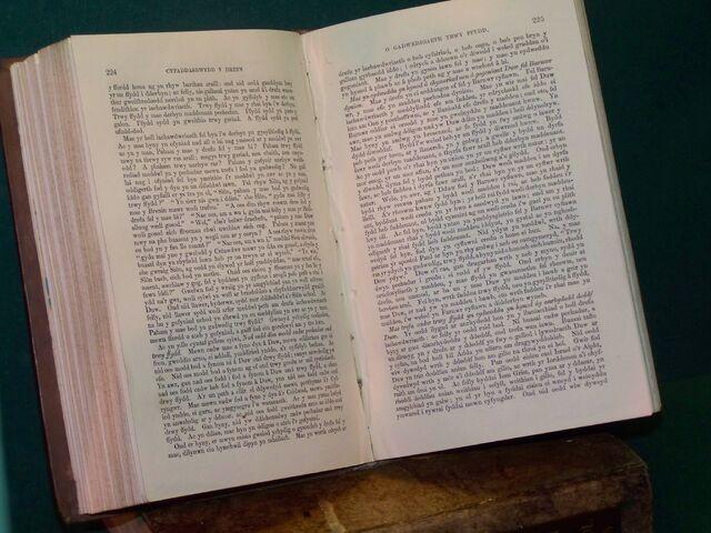 File:Cyfaddasrwydd y Drefn o Gadwedigaeth trwy Ffydd.JPG
