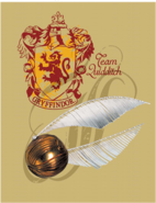 Gryffindor™ Team Quidditch™ Poster - Harry Potter and the Half-Blood Prince™