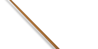 Newton Scamander's wand