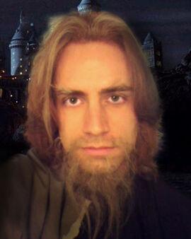 Harry potter christian