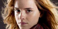 Hermione Granger's scarf