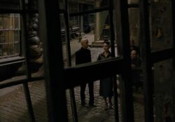 Malfoys at Diagon Alley